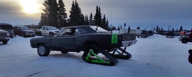 Cine spune ca un Muscle-Car nu poate merge fara probleme pe zapada?