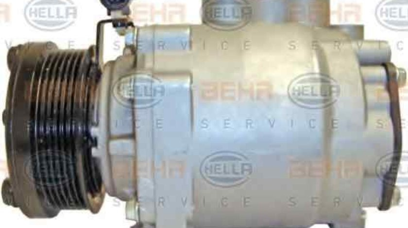 Compresor climatizare FORD TOURNEO CONNECT HELLA 8FK 351 334-611