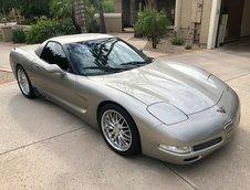 Corvette buggy