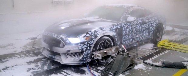 Cum isi testeaza Ford masinile pentru cele mai grele conditii de iarna?