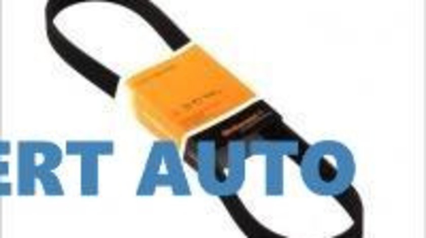 Curea alternator 6pk1070 Peugeot 307 (2000->)[3A/C] 03L 903 137