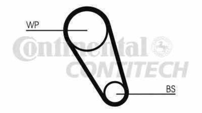 Curea de distributie VW TRANSPORTER V caroserie 7HA 7HH 7EA 7EH CONTITECH CT1143