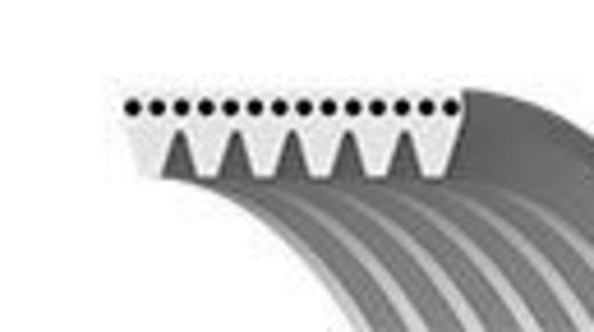 Curea transmisie cu caneluri FIAT PUNTO Van (188AX) (2000 - 2009) GATES 6PK1195 produs NOU