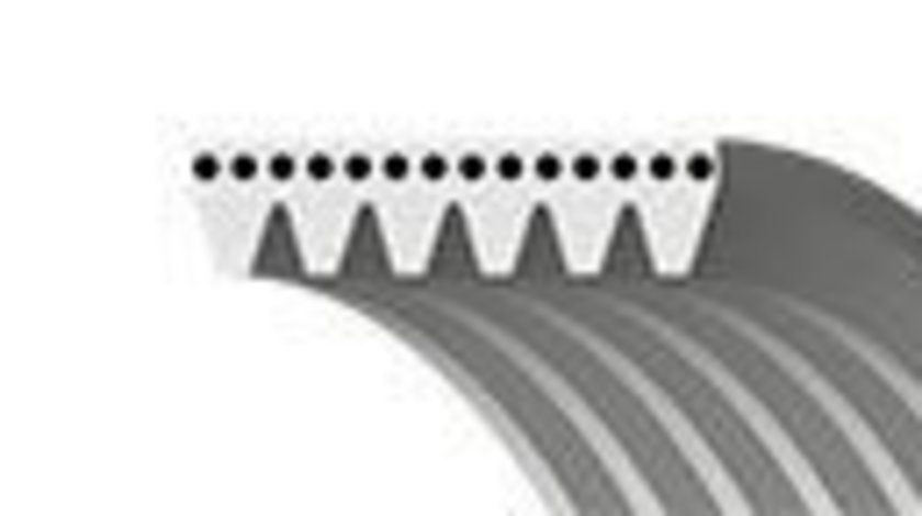 Curea transmisie cu caneluri PEUGEOT 206 Hatchback (2A/C) (1998 - 2016) GATES 6PK1203 produs NOU