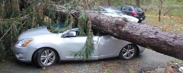 Dezastru in SUA: Uraganul Sandy a distrus circa 640.000 de masini