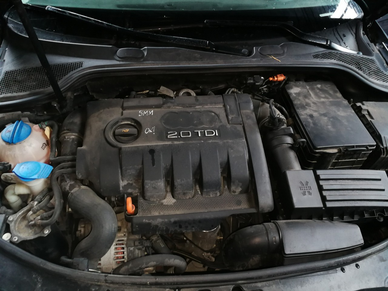 DEZMEMBREZ Audi A3 8P 2.0tdi tip motor BMM