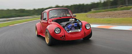 El este Volkswagen-ul cu motor de BMW, probabil singurul animal de acest fel.