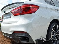 Eleron portbagaj Bmw x6 F16 Performance Carbon