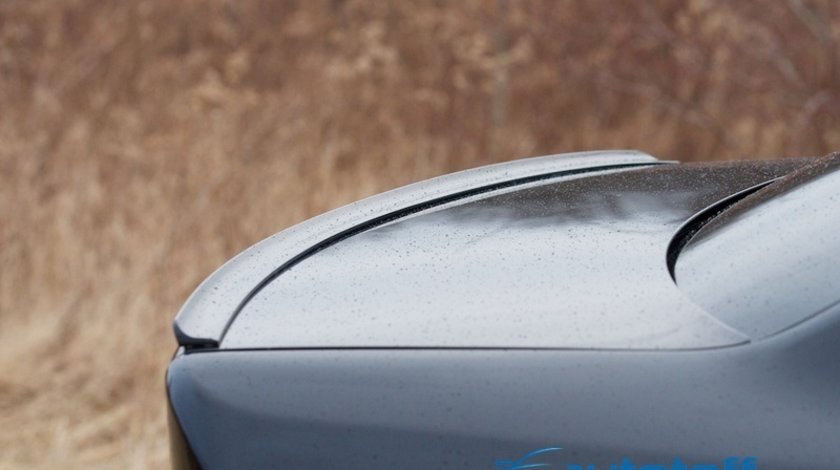 Eleron Portbagaj VW PASSAT 3B model M slim