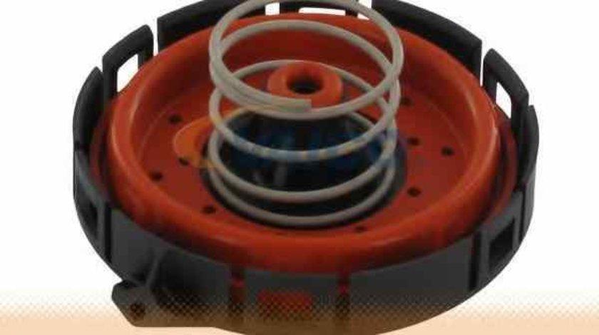 Filtru epurator BMW X5 E70 VAICO V20-0722