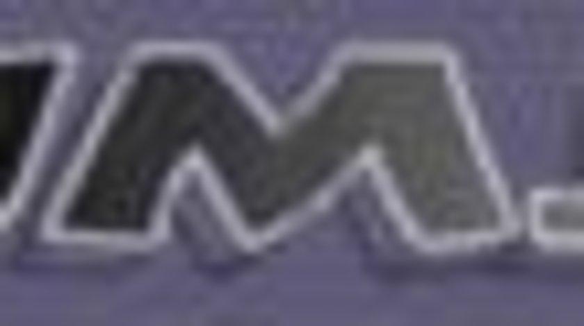 Filtru particule DPF JAGUAR X-TYPE Estate (X400) JMJ SEIV 1087