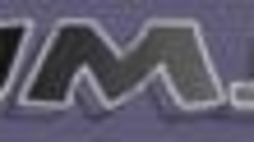 Filtru particule DPF MERCEDES-BENZ S-CLASS (W221) JMJ JMJ1138