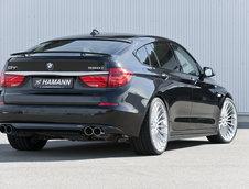 """Frumoasa"" din padurea adormita: BMW Seria 5 GT by Hamann"