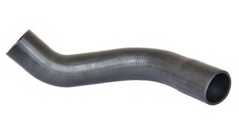 Furtun ear supraalimentare FIAT SCUDO combinato (220P) (1996 - 2006) BUGIAD 88716 piesa NOUA