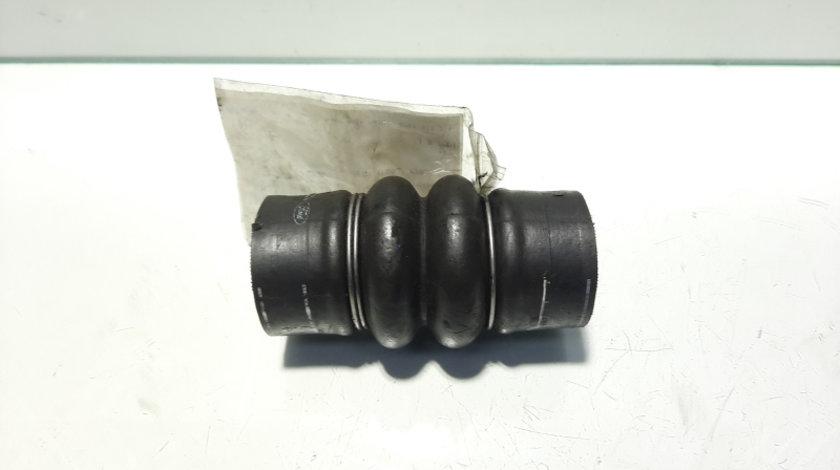 Furtun intercooler, Ford Transit Connect (P65), 1.8 TDDI (id:327052)
