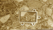 Garnitura racitor gaze Seat Leon generatia 2 [2005...