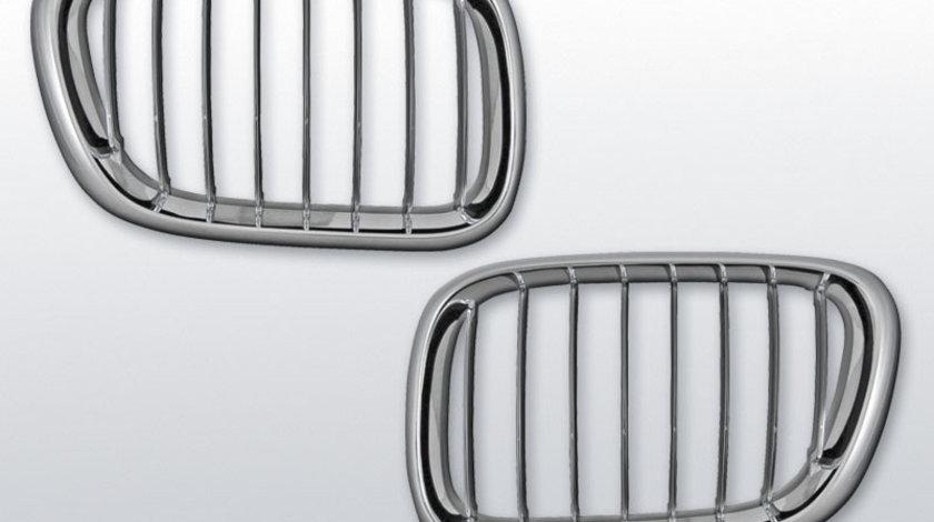 Grila Abs BMW X5 E53 99-2010 cromata