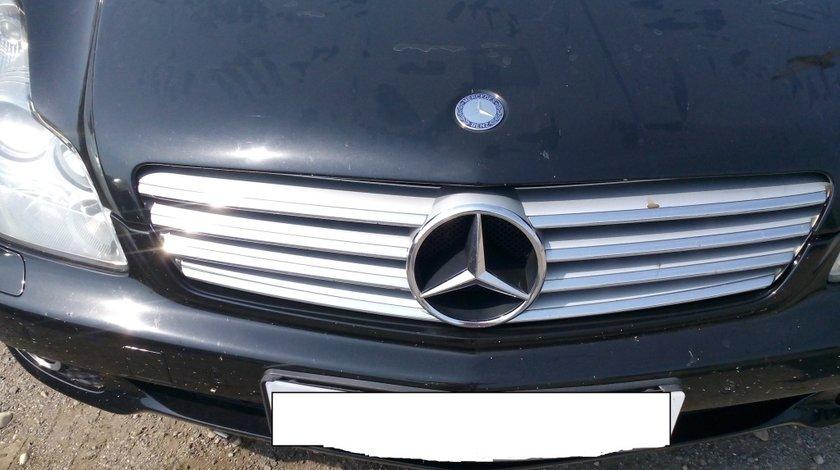 Grila Cu Emblema Mercedes W219 2004-2010