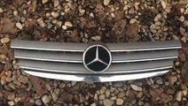 Grila fata Mercedes A Class w169