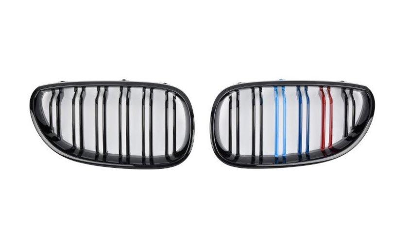 Grila radiator BMW 5 (E60) SPEEDMAX FS 05-60-03