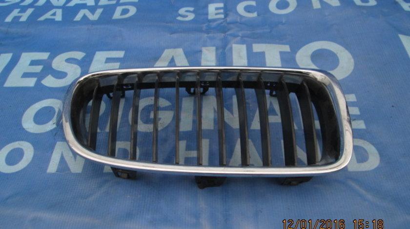Grila radiator BMW F25 X3