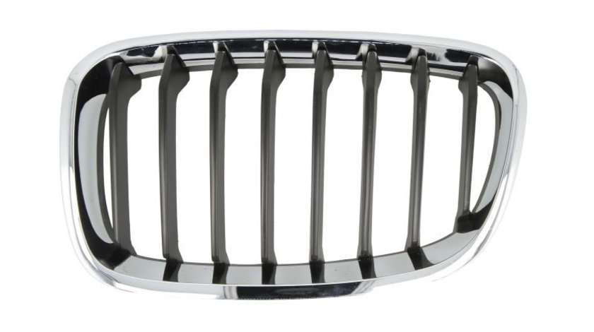 Grila radiator BMW Seria 1 (F20) (2010 - 2016) PRASCO BM1232024 piesa NOUA