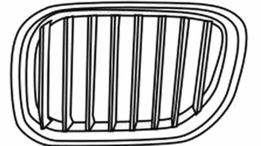 Grila radiator BMW X5 (E53) (2000 - 2006) QWP 1457 411 piesa NOUA