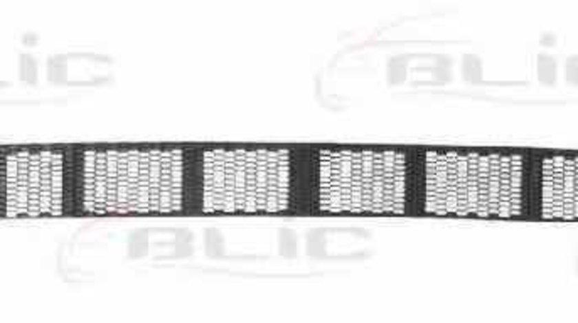 Grila ventilatie bara protectie NISSAN ALMERA II Hatchback N16 Producator BLIC 5513-00-1632912P