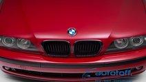 Grile BMW Seria 5 E39