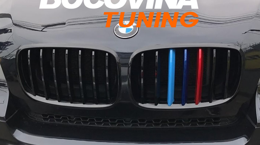 Grile BMW X6 E71 (08-15) M-Power Design