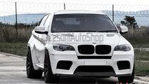 Grile BMW X6 E71 2007-2013