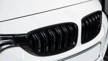 Grile centrale duble, BMW seria 3, F30, F31
