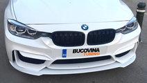GRILE DUBLE BMW SERIA 3 F30 F31 (DUPA 2011)
