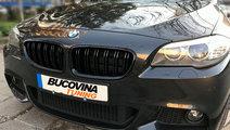 GRILE DUBLE BMW SERIA 5 F10 F11 (DUPA 2010)