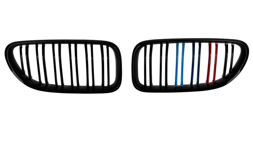 Grile Duble BMW Seria 6 F06 / F12 / F13 (Dupa-2012) 3 culori