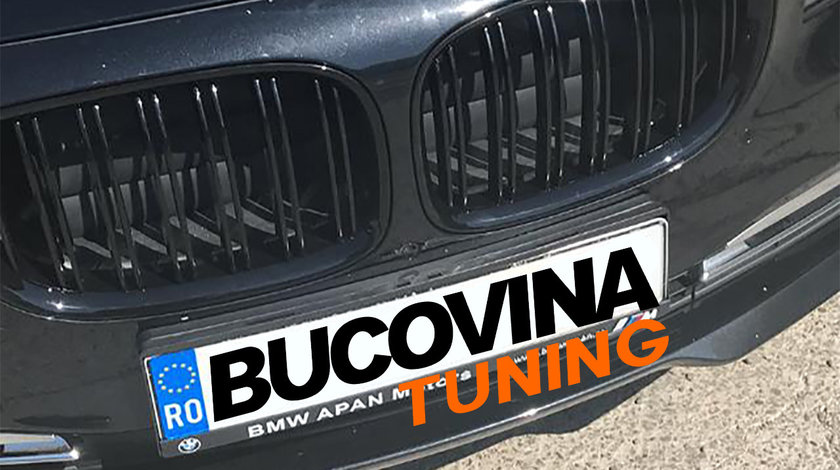 Grile Duble BMW Seria 7 F01 (08-15)