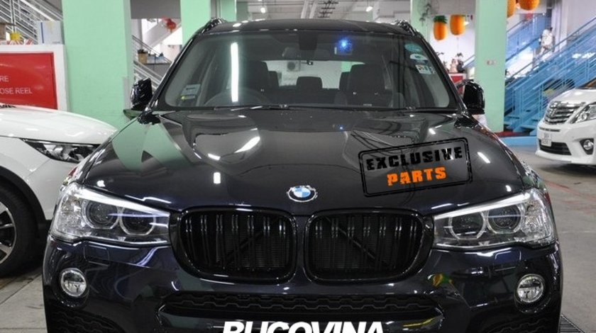 Grile Duble BMW X4 F26 (14-18)
