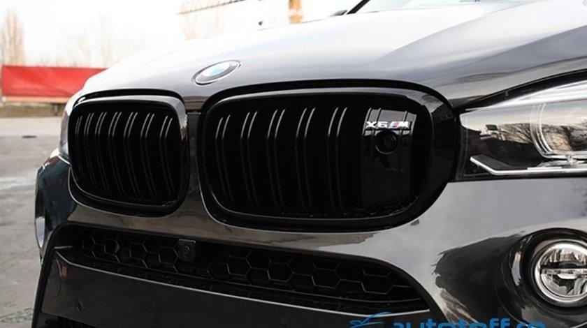 Grile duble M BMW X6 F16 (2015+)