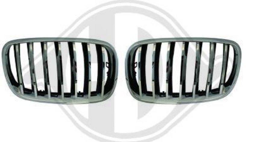 GRILE RADIATOR BMW X5/X6 - GRILE BMW X5/X6