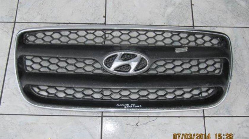 Grile radiator Hyundai Santa Fe
