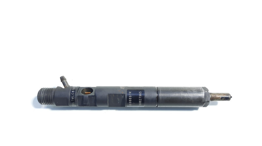 Injector, cod 166000897R, H8200827965, Renault Clio 3, 1.5 DCI, K9K770 (id:434963)