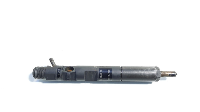 Injector, cod 166000897R, H8200827965, Renault Clio 3, 1.5 dci, K9K770 (id:441429)