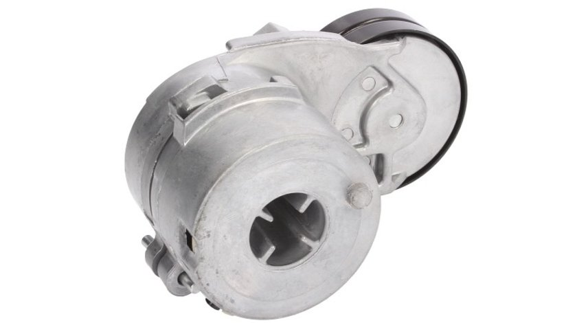 Intinzator curea accesorii AUDI 80 (8C2, B4) BTA E2W0016BTA