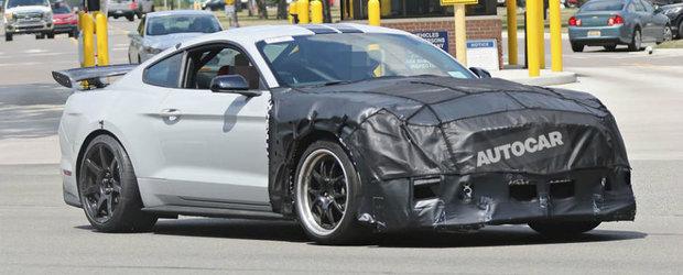 Intrebarea care sta pe buzele tuturor: Sa fie oare acesta noul Shelby GT500 de 800 CP?