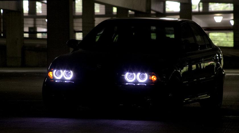 Kit angel eyes CCFL Philips BMW E36