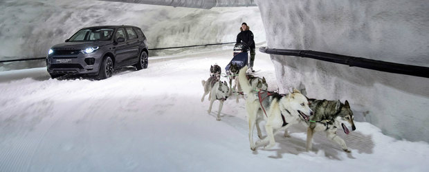 Land Rover a gasit zapada in luna august. Cum s-a descurcat noul Discovery Sport impotriva...unei sanii trase de caini