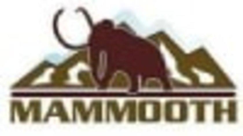 Lanturi DAEWOO ESPERO (KLEJ) MAMMOOTH MMT E9/60