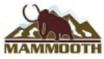 Lanturi FIAT GRANDE PUNTO (199_) MAMMOOTH MMT E9/5...
