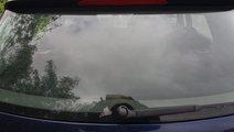 Luneta VW Golf 5 2006