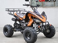 Model: ATV KinderBuggy110cc   Speedy2015